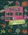 のぞいてみよう ウイルス・細菌・真菌図鑑 キノコやカビのなかま真菌のふしぎ (3)