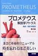 プロメテウス解剖学アトラス 胸部/腹部・骨盤部<第2版>
