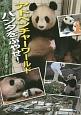 アドベンチャーワールド パンダをふやせ!