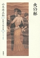 山本周五郎長篇小説全集 火の杯 (25)