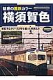 横須賀色 魅惑の国鉄カラー 青15号とクリーム1号を纏った車両たち