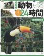 密着!動物たちの24時間 熱帯雨林編
