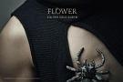 3集:FLOWER