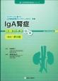 IgA腎症 診療ガイドQ&A<改訂第2版> 進行性腎障害診療指針シリーズ