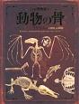 骨の博物館 動物の骨 (1)