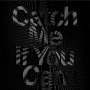 Catch Me If You Can(DVD付)