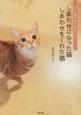 しあわせになった猫しあわせをくれた猫 フェリシモ猫部「道ばた猫日記」22のストーリー