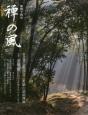 禅の風 特集:涅槃図-自己と真理をたのみとせよ (44)