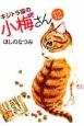 キジトラ猫の小梅さん (12)