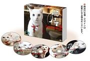 猫侍 SEASON2 DVD-BOX