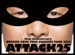 25th Anniversary DREAMS COME TRUE CONCERT TOUR 2014 - ATTACK25 -
