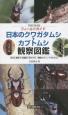 フィールドガイド 日本のクワガタムシ・カブトムシ観察図鑑 日本に棲息する種類と見分け方、観察のポイントがわか