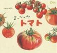 まっかっかトマト