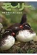 モーリー 特集:世界から見た北海道 2北米 北海道ネーチャーマガジン(39)