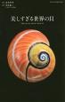 美しすぎる世界の貝 洗練をきわめた配色から神秘のフォルムまで、自然が創