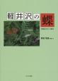 軽井沢の蝶 20000分の1の視点