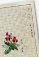 孫に伝えたい私の履歴書 川上村から仙台へ おじいちゃんのたどった足跡
