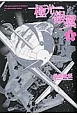 極光-オーロラ-ノ銀翼 (1)