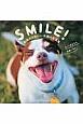 SMILE! 動物のかわいい笑顔の写真集 きっとあなたも笑顔になる!