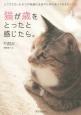 猫が歳をとったと感じたら。 シニアになったネコの快適な生活のために知っておきた