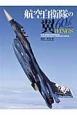 航空自衛隊の翼 60th