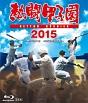 熱闘甲子園2015