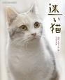 迷い猫 映画「先生と迷い猫」公式写真集