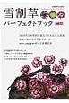雪割草パーフェクトブック 白覆輪段咲き交配 日本雪割草協会役員座談会 (13)