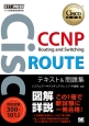 CCNP Routing and Switching ROUTE テキスト&問題集 対応試験300-101J
