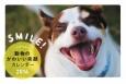 スマイル!動物のかわいい笑顔カレンダー 2016