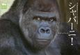 シャバーニ! 東山動植物園オフィシャルゴリラ写真集