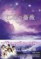 江湖の薔薇 DVD-BOX