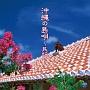 ザ・ベスト 沖縄の島唄~民謡~