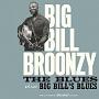 THE BLUES + BIG BILL'S BLUES