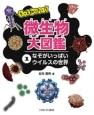 もっと知りたい!微生物大図鑑 なぞがいっぱいウイルスの世界 (1)