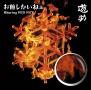 お前しかいねぇ 遊turing RED RICE(from湘南乃風)(A)(DVD付)