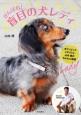 がんばれ!盲目の犬レディ オリンピックメダリスト・山本博のわんわん物語