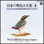 日本の野鳥大全集-4