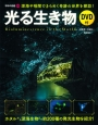 光る生き物 DVD付 深海や暗闇できらめく奇跡の世界を探訪!