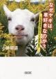 なぜヤギは、車好きなのか? 公立鳥取環境大学のヤギの動物行動学