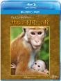 ディズニーネイチャー/サルの王国とその掟 ブルーレイ+DVDセット