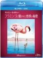 ディズニーネイチャー/フラミンゴに隠された地球の秘密 ブルーレイ+DVDセット