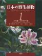日本の野生植物<改訂新版> ソテツ科~カヤツリグサ科 (1)