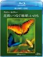 ディズニーネイチャー/花粉がつなぐ地球のいのち ブルーレイ+DVDセット