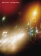 野口里佳 夜の星へ ベルリンの街、一本のフィルムから生まれた新作