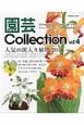 園芸Collection 斑入り植物 新・平成三色すみれ エビネ ミヤマウズラ (4)