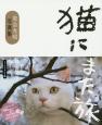 猫にまた旅 フィルムカメラ編 岩合光昭写真集