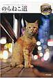 のらねこ道 夜の繁華街にたむろう路上の猫たち