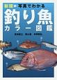 写真でわかる釣り魚カラー図鑑<新版>