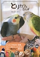 とりカフェさんぽ 関東エリアのインコ、フクロウ、文鳥…かわいい鳥たち